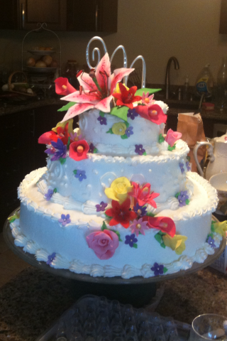 Cake Decorating   Barbi s Favorite Things